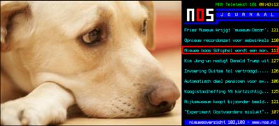 NOS: Nieuwe baas Schiphol toch geen labrador